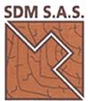 sdm_sas